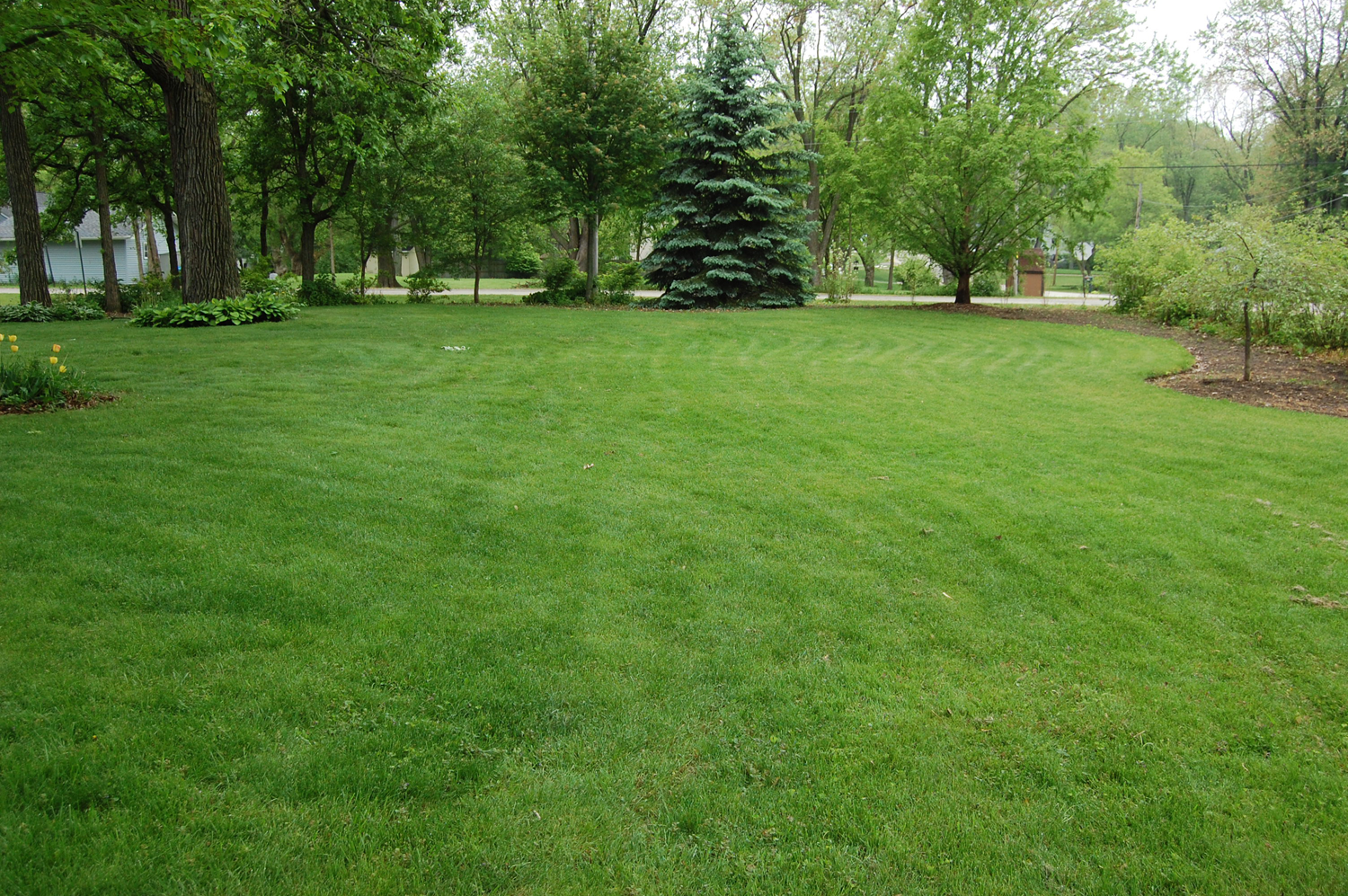 Image gallery lawn for Landscaping your garden